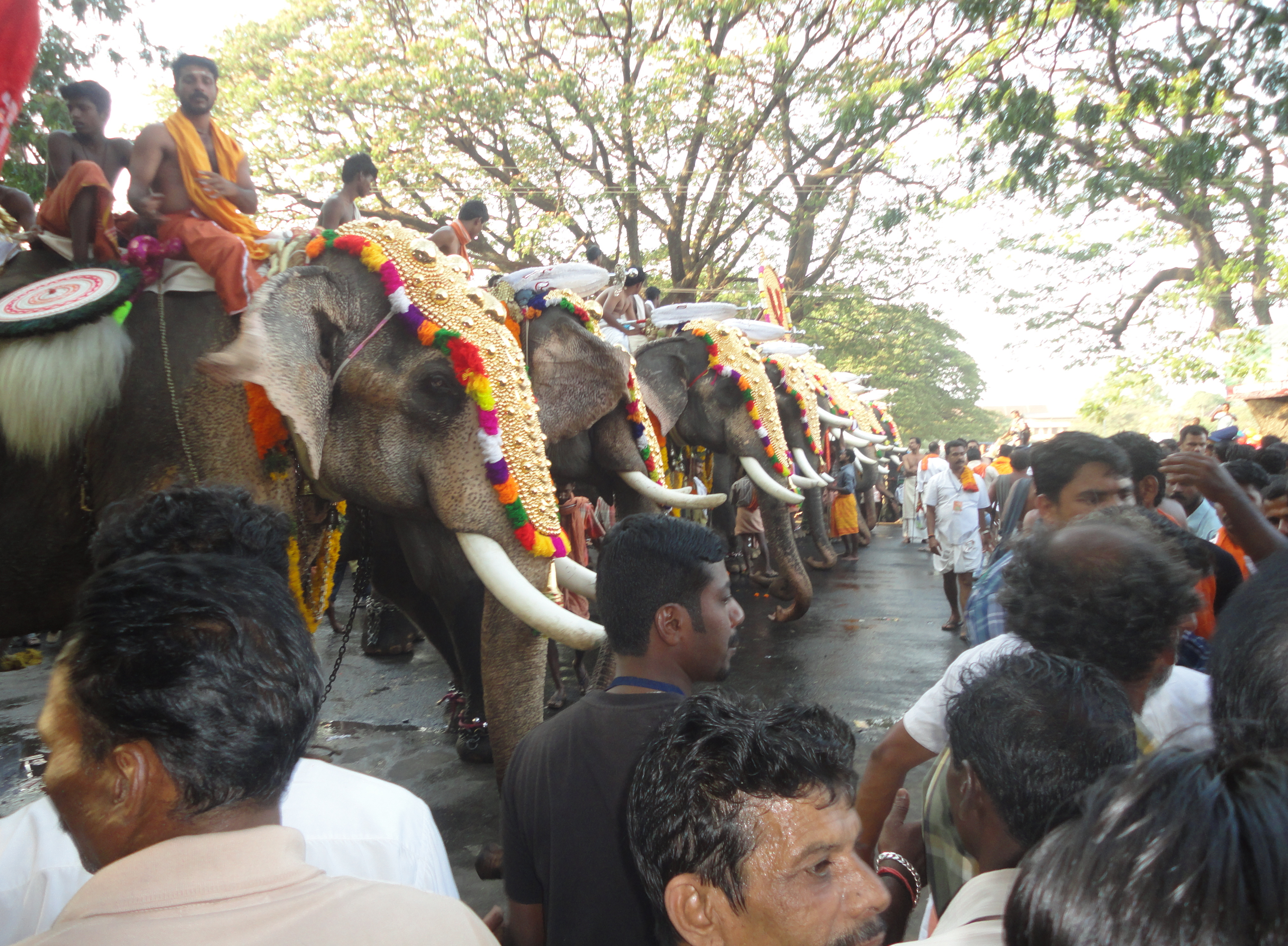 Festivals around Tharavad